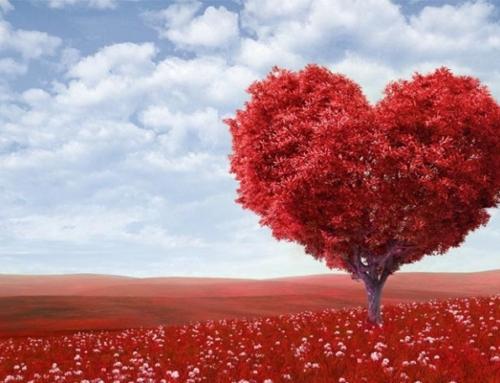 Hoje é o Happy Valentine's Day (Dia dos Namorados dos EUA)
