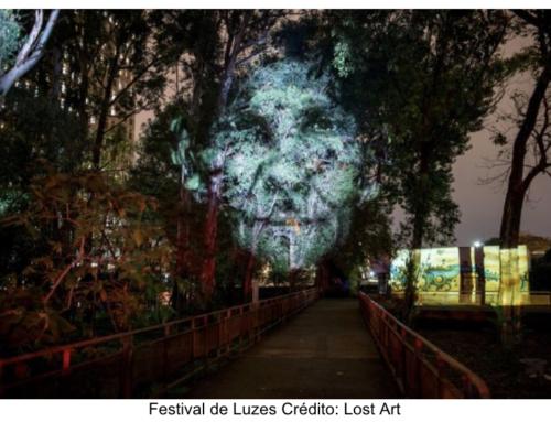 Virada Sustentável SP: Festival de Luzes SP, intervenções no metrô e performances artísticas virtuais são destaques desta semana
